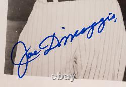 PSA GEM MINT 10 Signed Joe DiMaggio Mickey Mantle Ted Williams Encapsulated 8x10