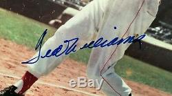 Scarce Ted Williams Signed-autographed 1946 Look Magazine-red Sox Jsa Letter