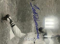 Ted williams signed picture